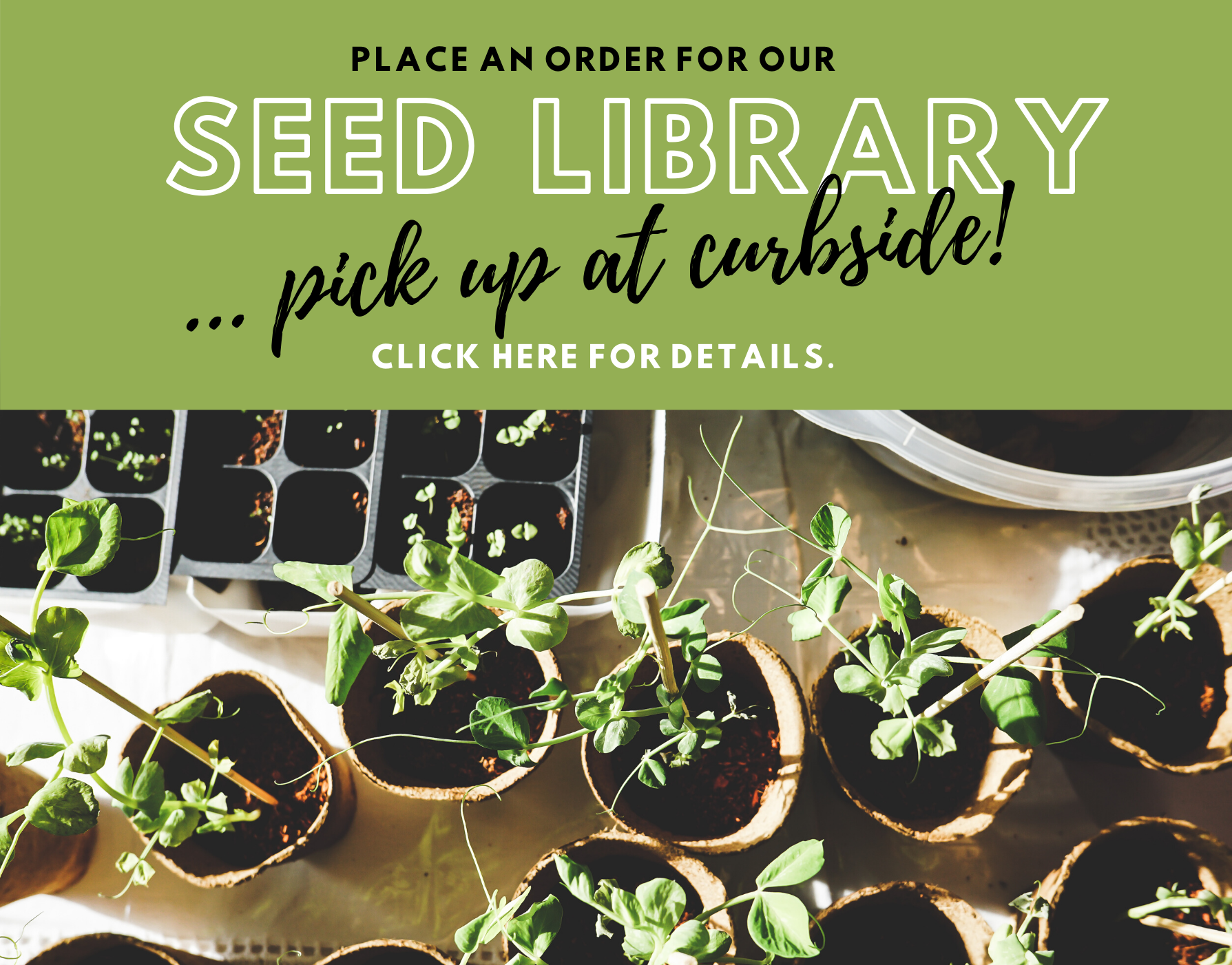 Pick up Seeds at the Library